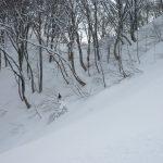 Hakuba Snow Report: January 6th, 2012