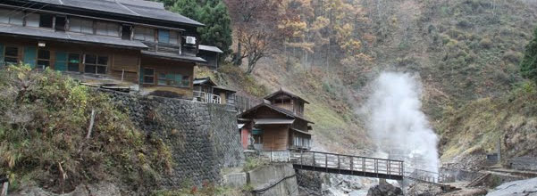 Snow Monkeys Accommodation: Kanbayashi Onsen