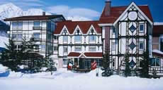 Roseheim Hotel in Hakuba Japan