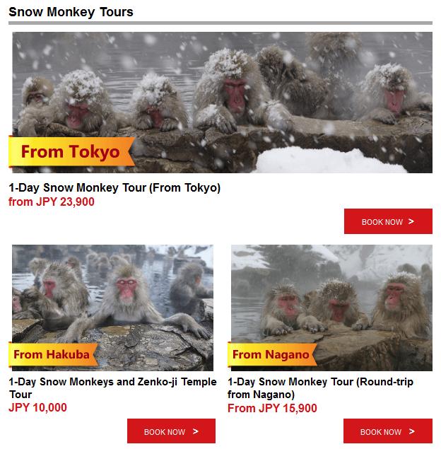 japan snow monkey tours - tokyo, nagano, hakuba
