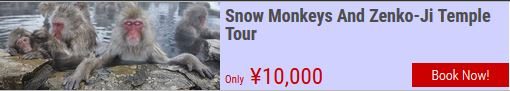 snow monkeys hakuba tour