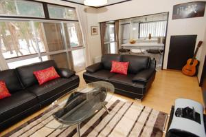 Balls Deep Inn - Hakuba Self-Contained Accommodation,