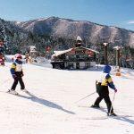 Myoko-Nagano Ski Pass
