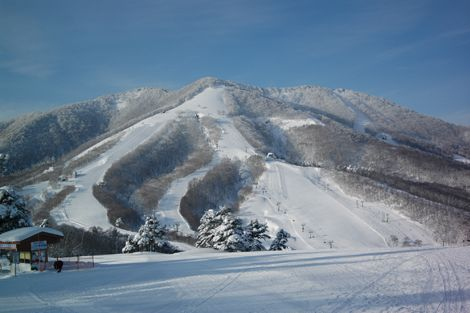 Nagano Snow and weather Report in Madarao Kogen