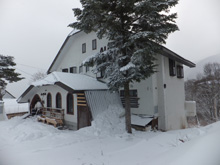 Cottage White Rabbit Madarao Kogen